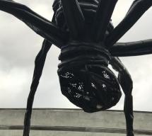 crazyass_spider
